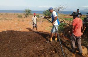 Agricultura formação